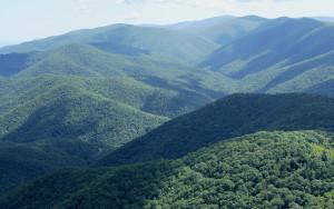 Ramseys Draft Wilderness