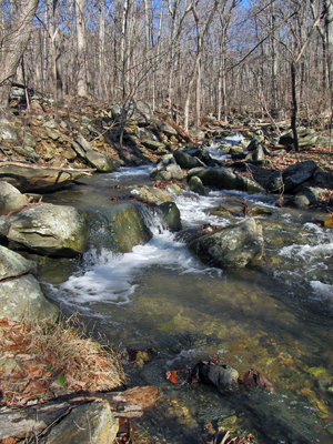 Dominion plans in-stream blasting for crossing the South Fork of the Rockfish River, a native trout stream adjacent the proposed drilling operation.