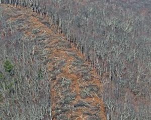 Back Creek Mountain, Highland County